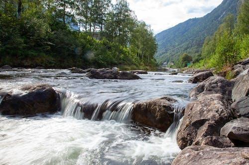 Foto profissional grátis de água, cachoeira, fotografia ao ar livre, fotografia da natureza