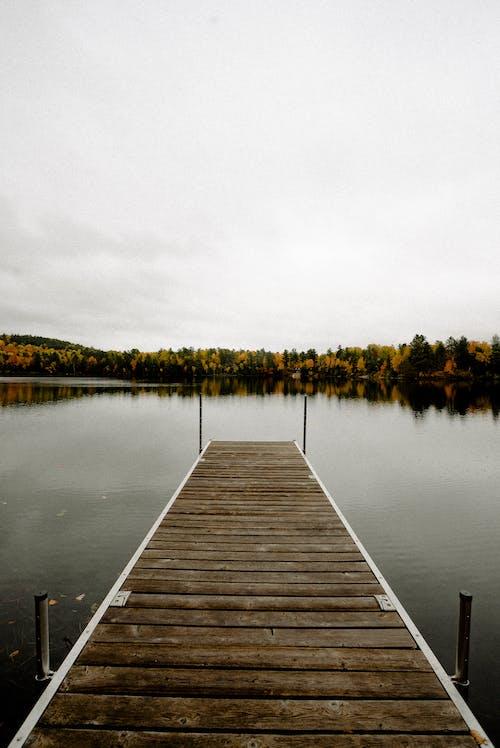 冷靜, 和平的, 寧靜, 水 的 免費圖庫相片