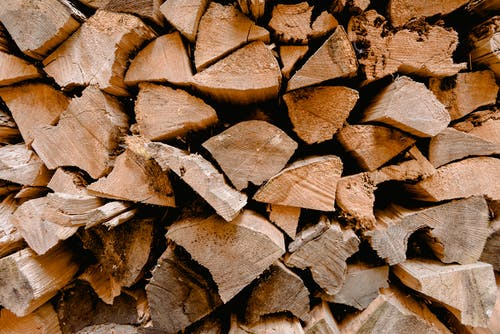 Close-up photography of Firewoods