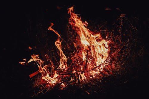 Twigs burning at dark night