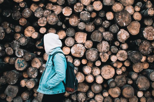 Person Wearing Hoodie Near Pile Of Logs