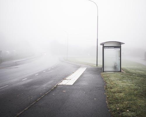 下落, 光, 公車站, 冷 的 免费素材照片