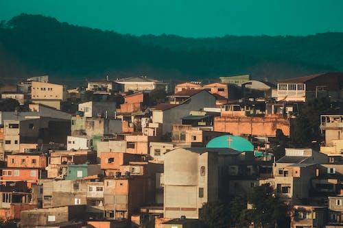Immagine gratuita di brasile, città