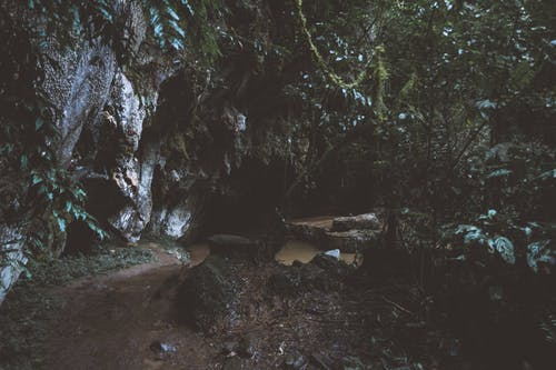 Ilmainen kuvapankkikuva tunnisteilla aamu, joki, kivet, kosket