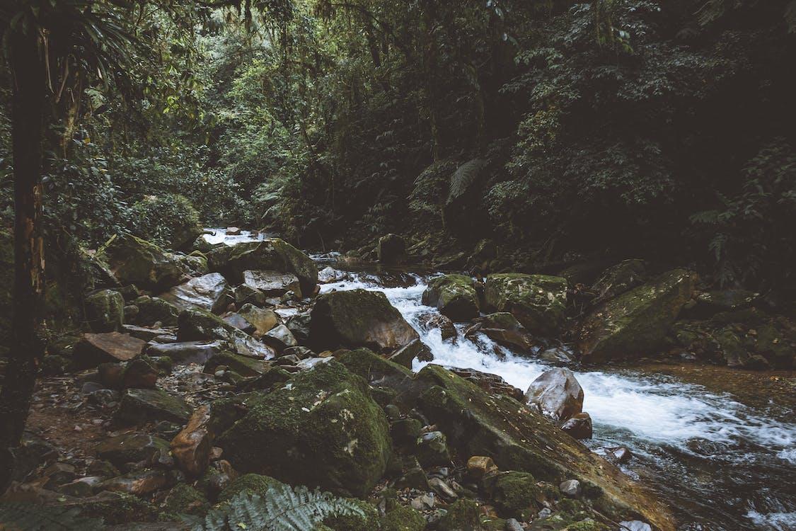 天性, 小河, 岩石