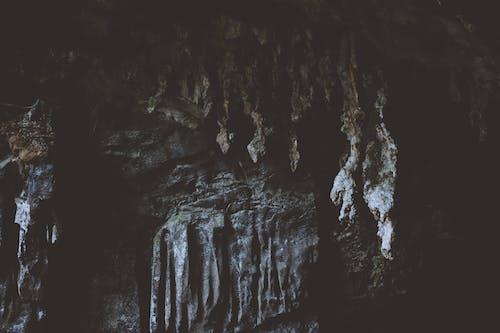 Gratis stockfoto met angstaanjagend, avontuur, binnen, buiten