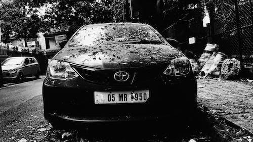 Ingyenes stockfotó eső után, fekete-fehér, indiai utcák, indián nyár témában