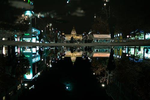 밤, 프라하의 무료 스톡 사진