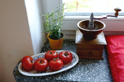 Foto profissional grátis de alecrim, moedor de café, moedor de mão, pimenta