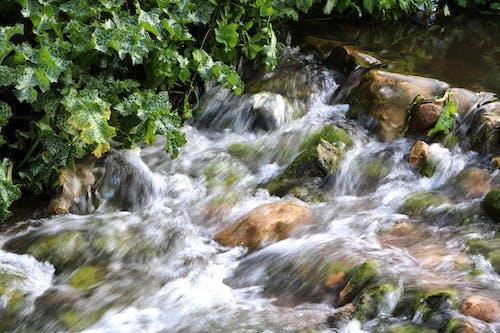 Základová fotografie zdarma na téma jaro, kameny, příroda, řeka
