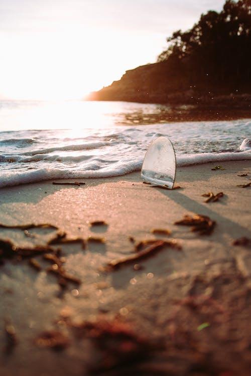 a la vora de l'oceà, alba, bokeh