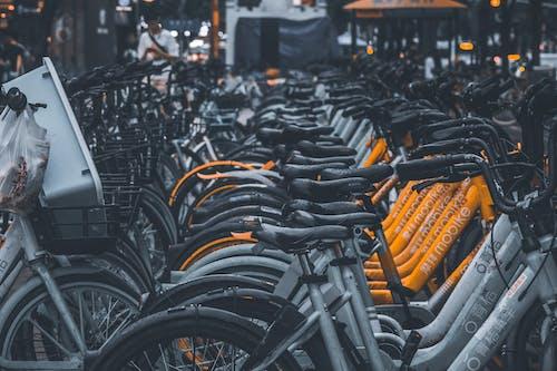 Fotobanka sbezplatnými fotkami na tému bicykle, denné svetlo, detailný záber, dizajn