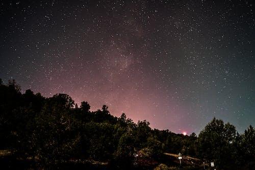 Ingyenes stockfotó celebek, ég, éjszaka, éjszakai égbolt témában