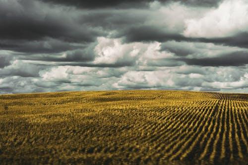 4k 桌面, 厚厚的雲層, 壁紙, 天空 的 免費圖庫相片