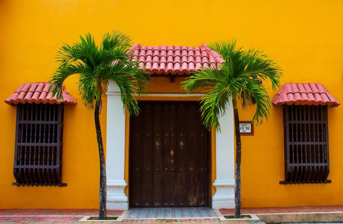 2 Green Palm Trees Beside Wooden Door