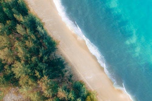 Gratis stockfoto met bij de oceaan, bird's eye view, blauw, bomen
