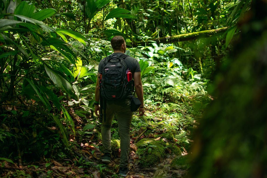 Man Carrying Black Backpack Standing Beside Trees