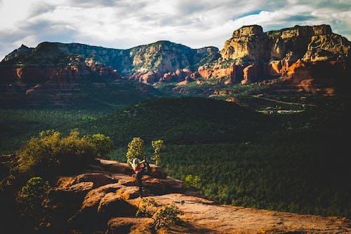 Immagine gratuita di alba, alberi, ambiente, attivo