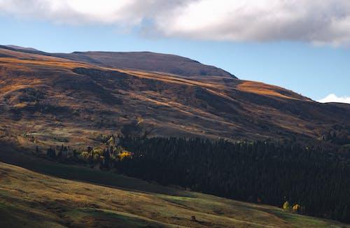 Základová fotografie zdarma na téma hora, krajina, louky, malebný