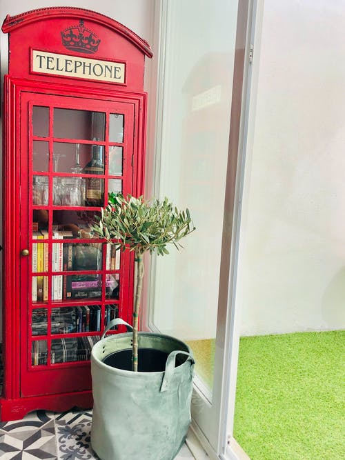 Foto d'estoc gratuïta de disseny d'interiors, jardí, llar, llar dolça llar