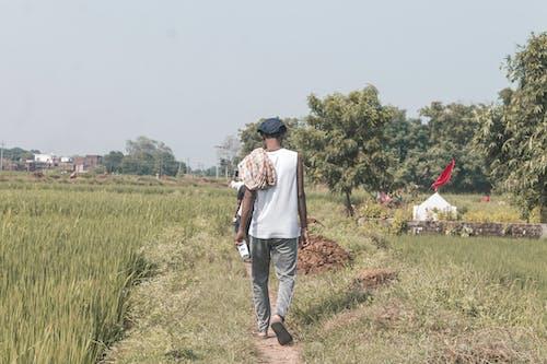Δωρεάν στοκ φωτογραφιών με background, αγροτική περιοχή, αγροτική σκηνή, αγροτικός