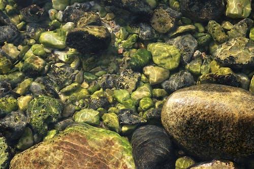 Základová fotografie zdarma na téma hluboká voda, hluboké moře, hluboký, kameny