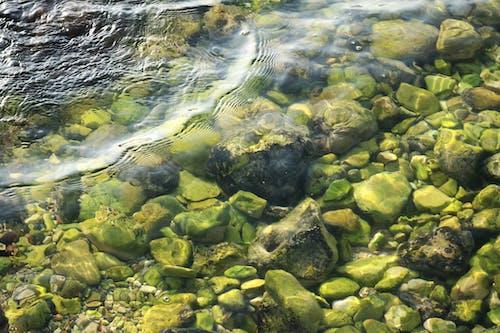 Základová fotografie zdarma na téma čerstvý, hluboké moře, hluboký, kameny