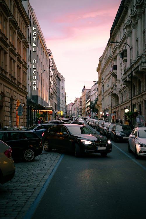 가벼운, 자동차, 프라하의 무료 스톡 사진