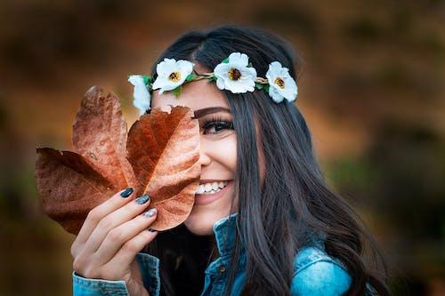 Gratis lagerfoto af blade, efterår, efterårsblade, falde