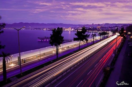 Free stock photo of city, city lights, night