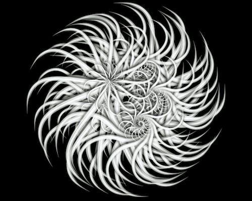 Бесплатное стоковое фото с дизайн, спираль