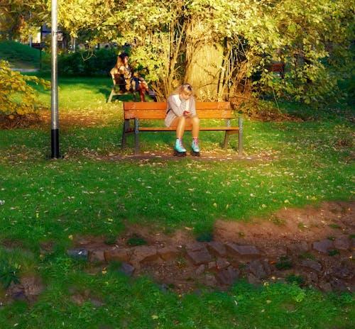 Foto profissional grátis de árvores, assento, assentos, casal