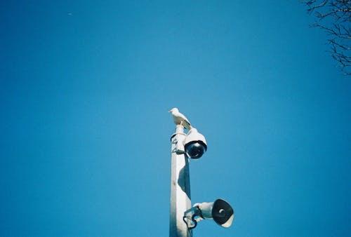 Δωρεάν στοκ φωτογραφιών με ασφάλεια, επιτήρηση, κάμερα, ΚΑΜΕΡΑ ΑΣΦΑΛΕΙΑΣ