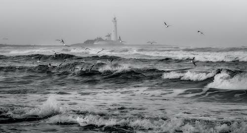 dalgalar, deniz, deniz feneri, deniz manzarası içeren Ücretsiz stok fotoğraf
