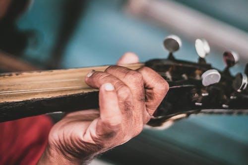 Ảnh lưu trữ miễn phí về đàn ghi ta, nghệ sĩ, nghệ sĩ guitar, nhạc cụ