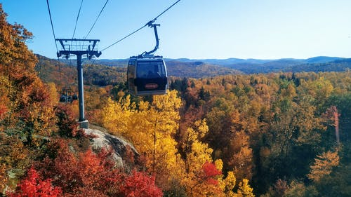 Free stock photo of cable car, fall colors, forest, maple