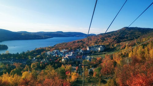 Free stock photo of cable car, fall colors, lake, maple