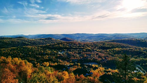 Free stock photo of fall colors, maple, Mont-Tremblant, trees