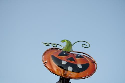 Foto stok gratis boo, cemilan, halloween, hantu