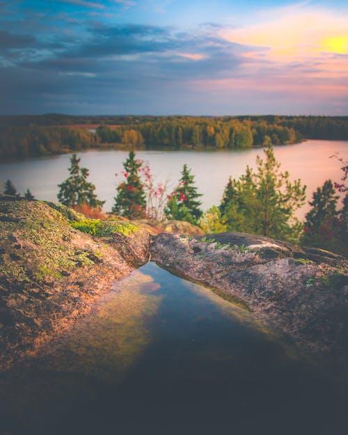 Бесплатное стоковое фото с водоем, восход, деревья, закат