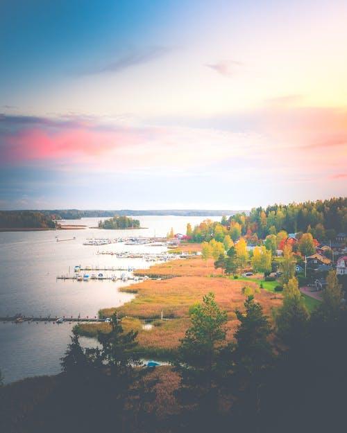 Бесплатное стоковое фото с апельсин, бассейн, вода, гавань