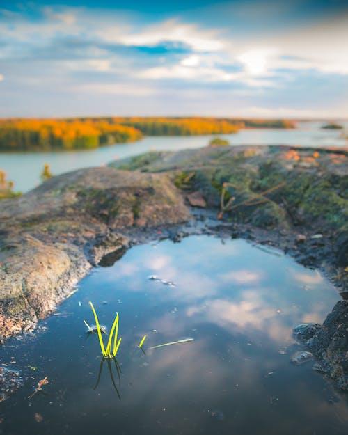 Бесплатное стоковое фото с апельсин, бассейн, вода, закат