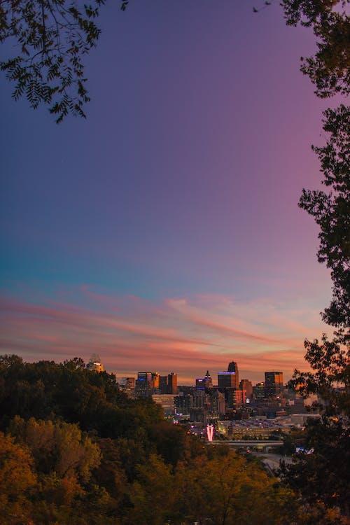 açık, ağaçlar, akşam karanlığı, arkadan aydınlatılmış içeren Ücretsiz stok fotoğraf