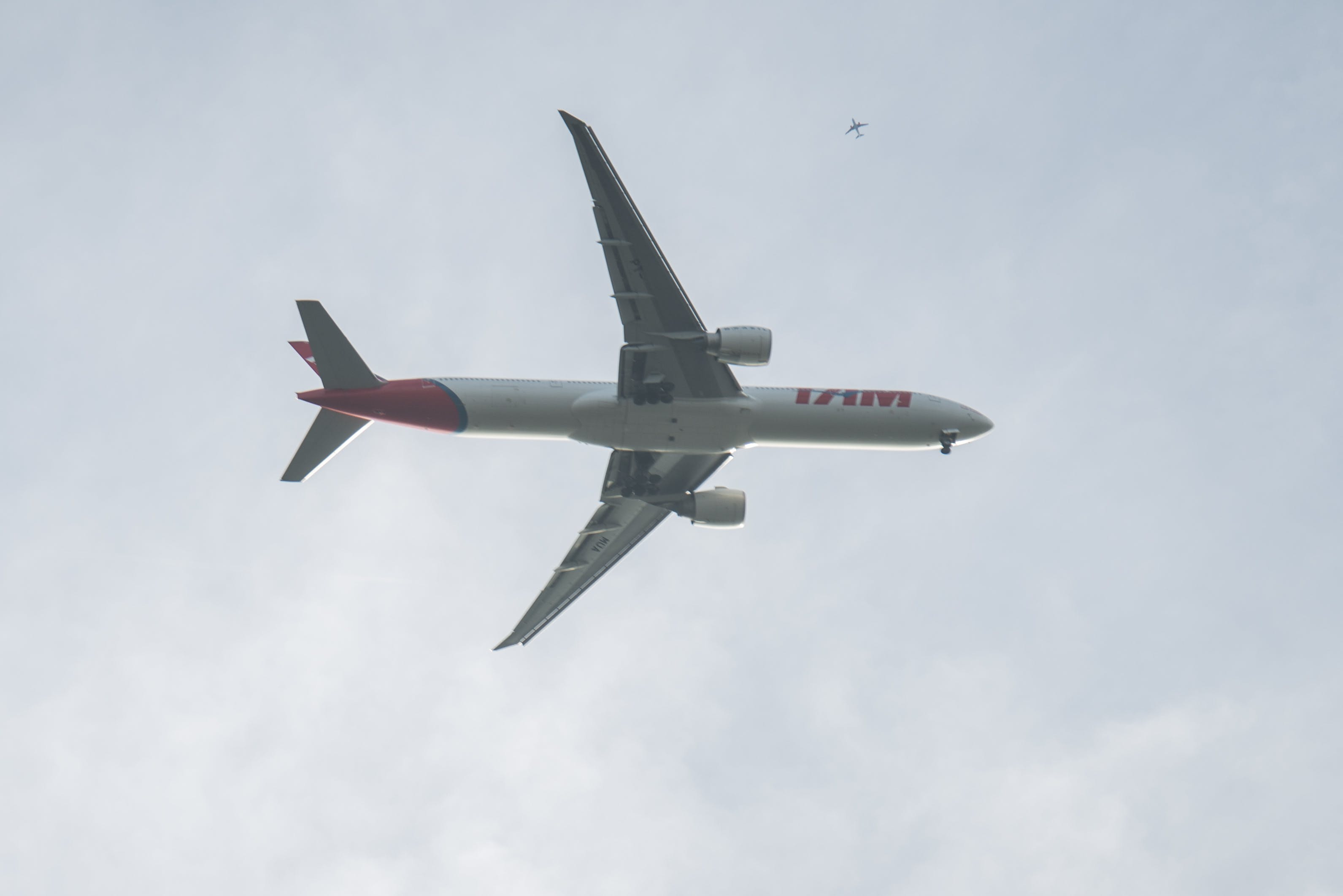 Free stock photo of flight, flying, big, plane