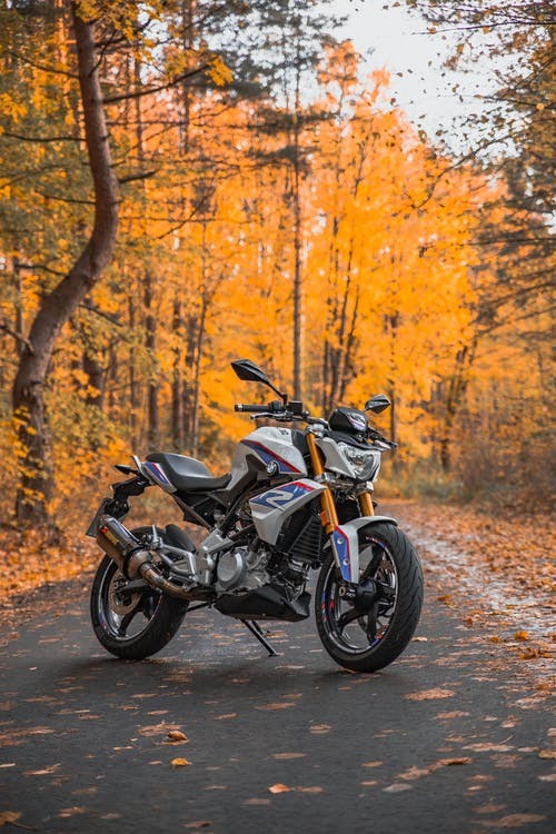 Foto profissional grátis de bmw 310 gs, cores do outono, floresta no outono