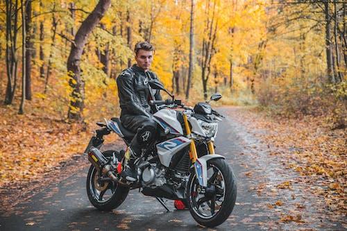 Ảnh lưu trữ miễn phí về BMW, moto, người Đạp xe đạp, rừng tâm trạng mùa thu