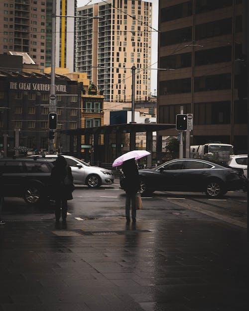 Person Holding Pink Umbrella