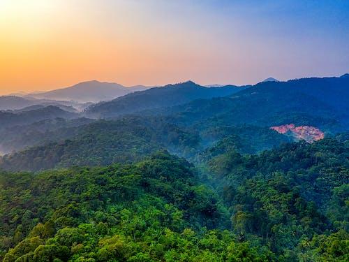 Ảnh lưu trữ miễn phí về cảnh quan đẹp, cây, chụp ảnh phong cảnh, danh lam thắng cảnh