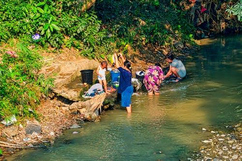 Kostnadsfri bild av bäck, barn, dagtid, flod