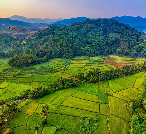 açık hava, alan, arazi, Çiftlik içeren Ücretsiz stok fotoğraf